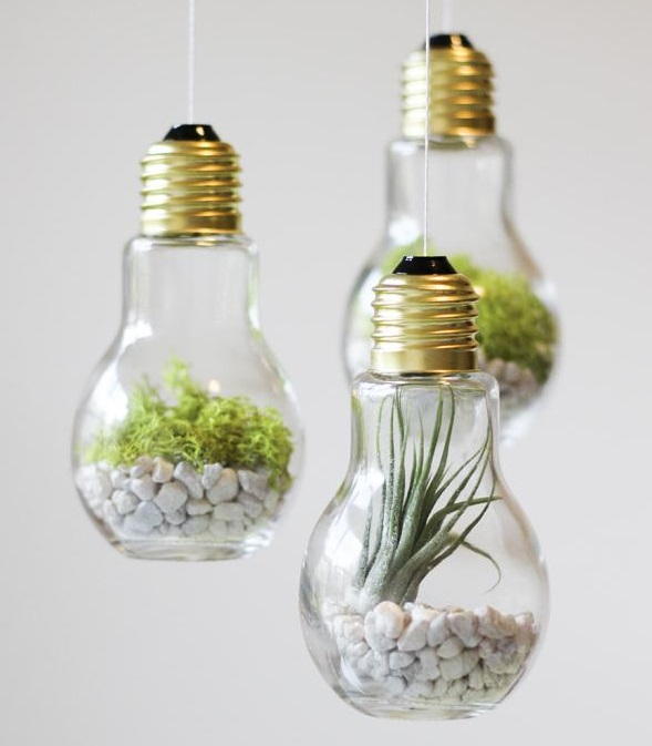 DIY-Lightbulb-Terrariums HOME DECOR