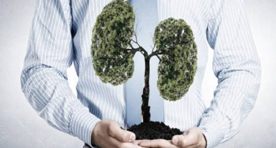 plants-for-lungs-health